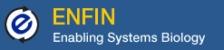 store/images/2009/ENFIN-logo_color.jpg